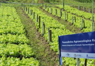Fazendinha Agroecológica é premiada pelo CREA-RJ